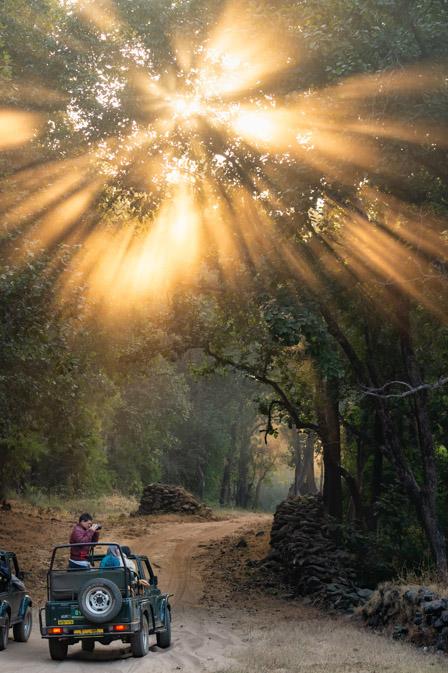 https://www.wildworldindia.com/wp-content/uploads/2019/10/DSC_6000.jpg