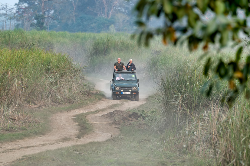 https://www.wildworldindia.com/wp-content/uploads/2020/01/DSC_8053-2.jpg