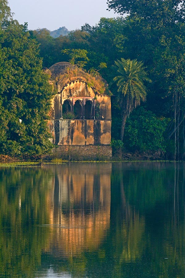 https://wildworldindia.com/wp-content/uploads/2020/01/Raj-Bagh_Ranthambhore_Tiger-Photography-India_Best-Tiger-Park-India.jpg