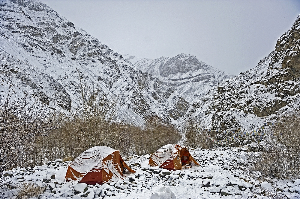 https://www.wildworldindia.com/wp-content/uploads/2020/01/wildworldindia_snow-leopard_camping-in-hemis_ladakh.jpg